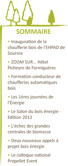 Sommaire Janvier 2013